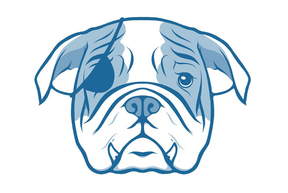 Portfolio-ill-Bulldog-001